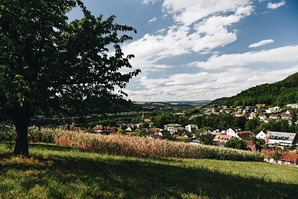 Baldegg, Gebenstorfer Horn & Wasserschloss