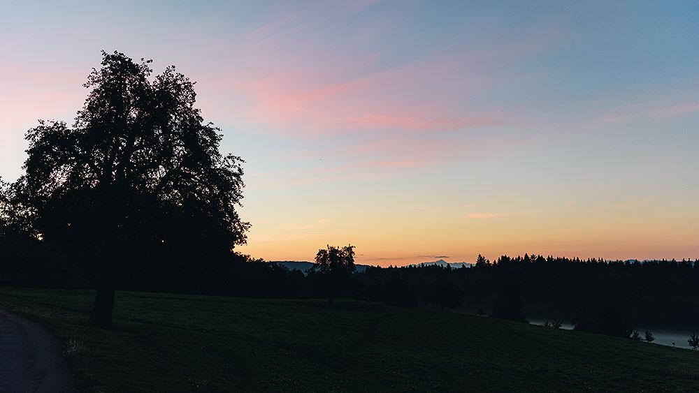 Morgens auf dem Eschenberg
