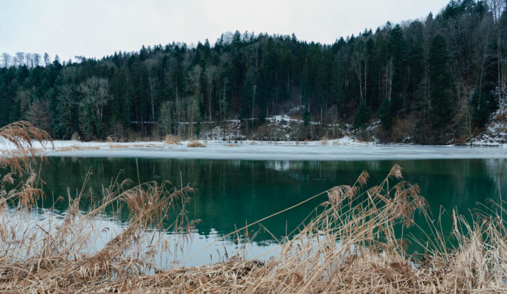 Am Himmerichweiher